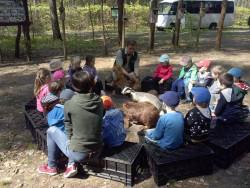 Przedszkolaki w leśniczówce