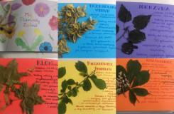 Zielnik - projekt edukacyjny